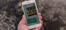 How to Delete WhatsApp Photos from iPhone and Android