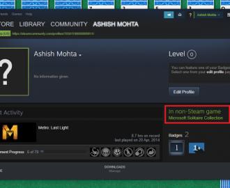 Non Steam Game Status in Steam Profile